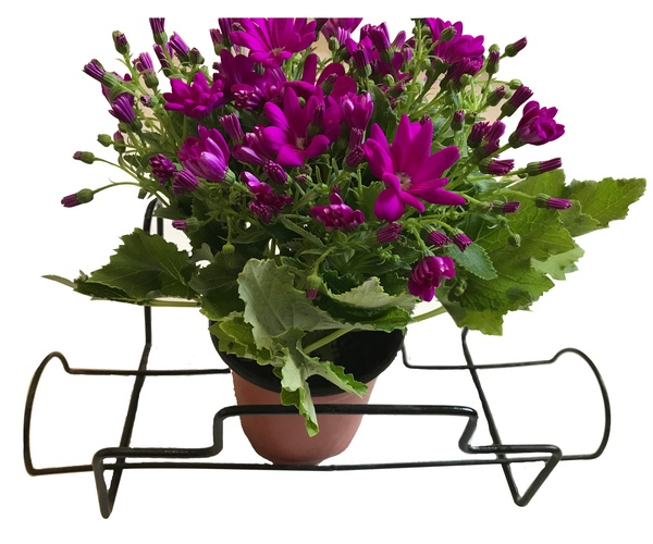 Flower Pot Holder  HHAIR01
