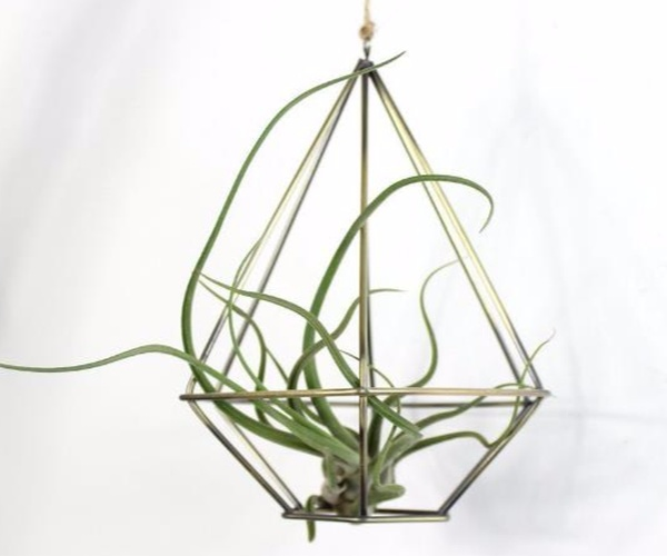 Air Plant Rack Holder Planter  HHAP06